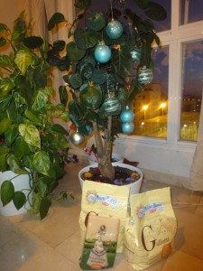 Il regalo di Marina di Genova sotto il mio albero di natale!